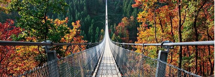 suspension-footbridge-geierlay-germany-picture-id867775868 (2)